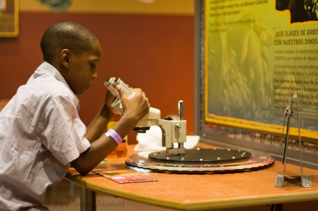 Fort Worth Museum of Science & Nature_Fort Worth Childrens Museum