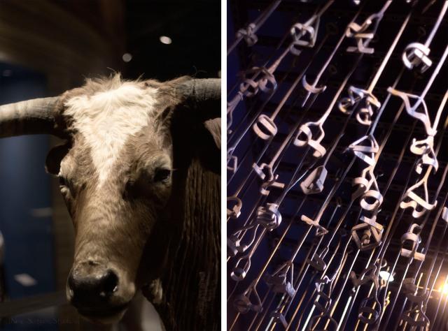 Cow+Branding